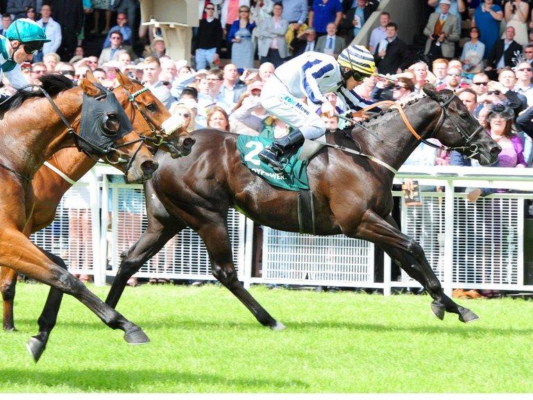 1Pt Win Line Of Reason @10/1, Moviesta @7/1, Qatar King George Stakes